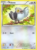 Pidove from BW Promos
