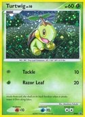 Turtwig from DP Promos