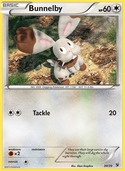 Bunnelby from Kalos Starter
