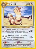 Furret from Neo Genesis