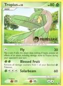 Tropius from Prerelease