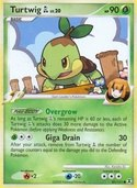 Turtwig GL from Rising Rivals
