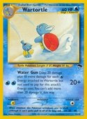 Wartortle from Southern Islands
