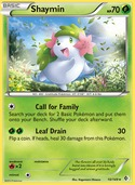 Shaymin from Boundaries Crossed